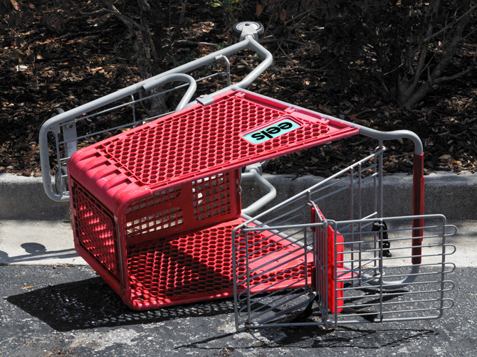 Eelst-Shopping-Cart