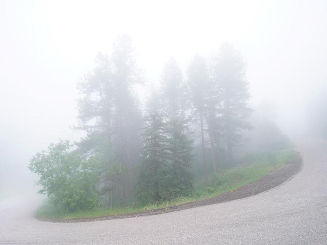Foothills-Fog